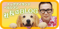 ベルシアン社長のブログ