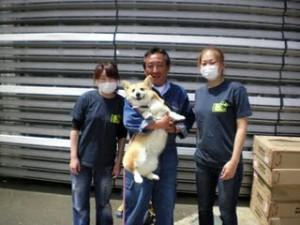 Dog care project  コーギーちゃん♥