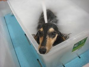 アコも泡のお風呂で浮いちゃうの❤気持ちイイよっ!