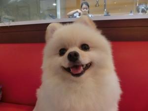 今日もこの笑顔!
