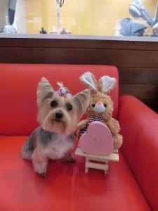 ウサギちゃんとラブリー2ショットです!